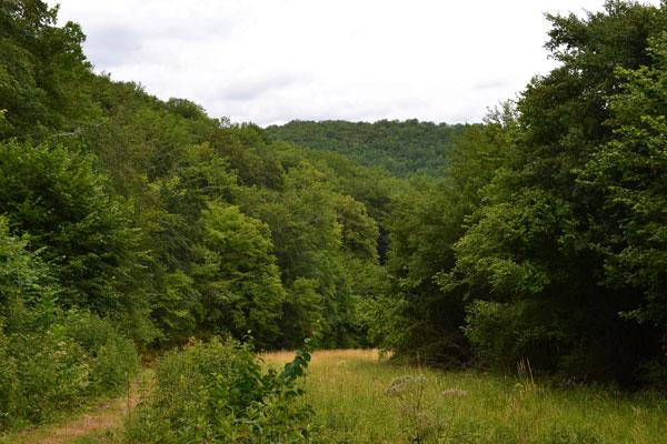 vallee a distance de marche du Manoir a Souillac