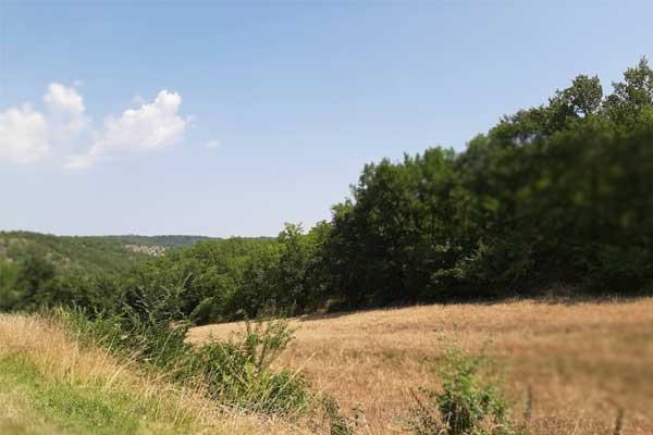 veld nabij Le Manoir in Souillac